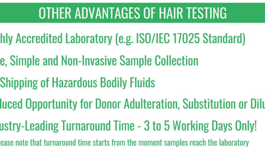 HairTestAdv-ENG